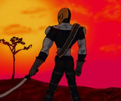 Mercenary in Sunset by sring-griffin