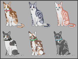 Point Adoptables (Open) by NlSSA