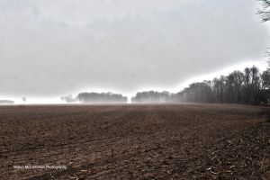 A Misty Field by aseaofflames