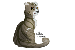 Twitchpaw by PatchyFallenstar