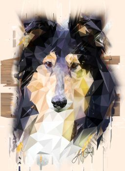 Rough Collie (Low Poly) by lunaroveda