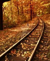Way to Autum IV. by Sunnystorm