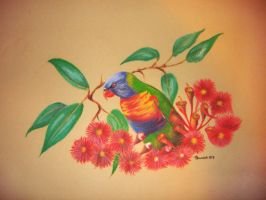 Rainbow Lorikeet in flowers by Sasquatch69