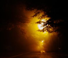 the light by Photogenetic