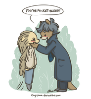 BBC Sherlock - Pocket-Sized by caycowa