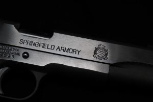 Springfield Armory by Wolfie303