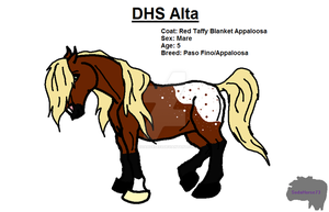 DHS Alta by SodaHorse73