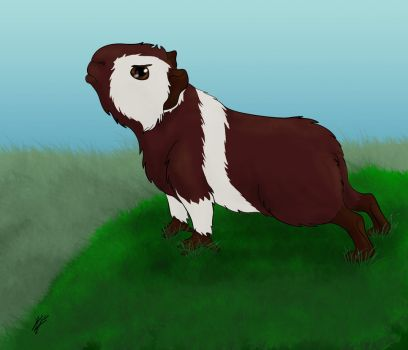 Peigo the Guinea Pig by higesblue