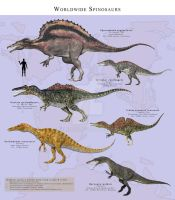 Worldwide Spinosaurs by PaleoGuy