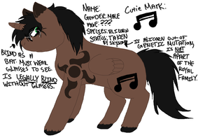 Pony With No Name Ref Sheet by SubjectSkyley