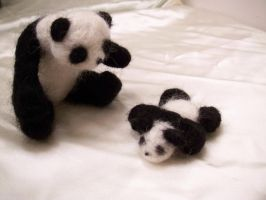 Mama and Baby Pandas by KimsButterflyGarden