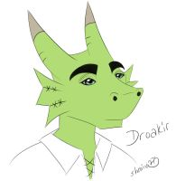 Droakir Request by shaina773