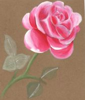 recycled pink rose by lovelylittlesunshine
