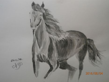Horse by talisath