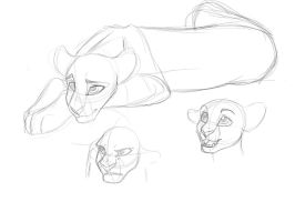 Bright Eyes fun Sketches by WingsandFeathers