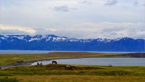Its all about Iceland by o0Christina0o
