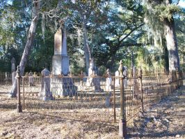 Newnansville Cemetery by DHuff-art