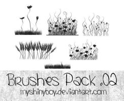 Brushes Pack .02 by MyShinyBoy