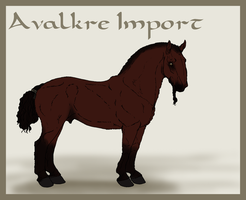 Avalkre Horse Import 9 by ReaWolf