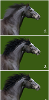 How I do horsehair by Avorage
