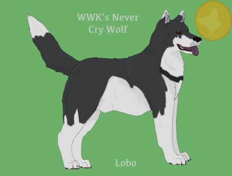 WWK's Never Cry Wolf by WolfofWhiteKennels