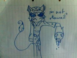 how we think abaot kawaii by Maniactheleader