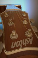 Ashton Guitar8 by Krzychuc4d