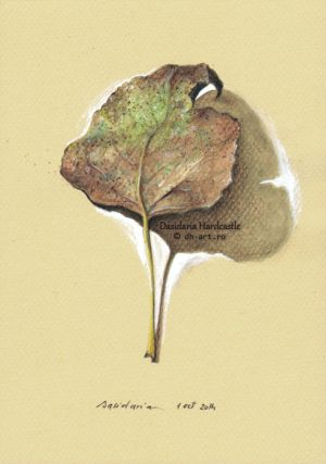 Project . Leaves . i by dh6art