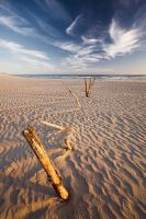 The Line by hougaard