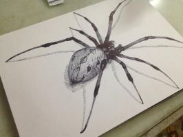 Spider by Lov3Art-LXK