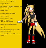 Bio: Kechi The Hedgehog by DarkXeo