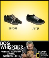 """DW """"Before and After"""" Ad by ZombieHip-Hop"""
