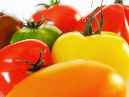 Tomates 2 by eco6org