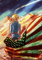 A beautiful world_America by darkn2ght