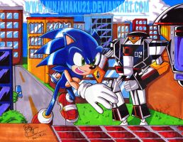 SA2B-City Escape by NinjaHaku21