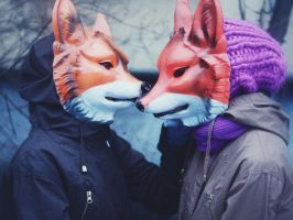 foxes by lafaette