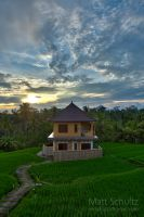 My Backyard in bali by fbcota