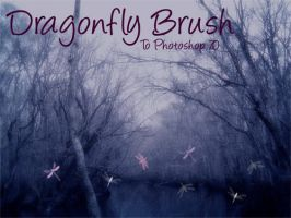 Dragonfly Brush by TheatruMundi