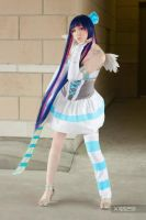 Stocking: PSG - ConG 2013 by X110291