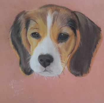 Pastel dog drawing by AltheaWorld