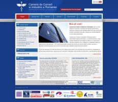 Chamber of Commerce and Industry website by bographics
