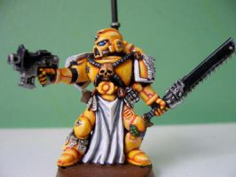Space Marine Veteran IV by Action-Fig