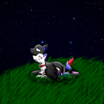 Under The Stars [Commission] by LastbutnotAlise