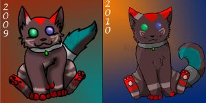 1 year comparison by cheetahprince