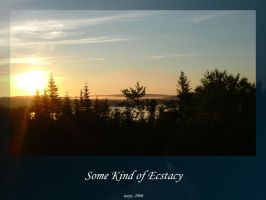 Some Kind of Ecstasy by isays