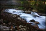 Morning on the Creek by TRBPhotographyLLC