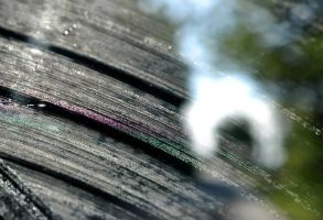 Windshield Streaks by Suinaliath