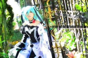 Cantarella: Caught in a trance by kuricurry
