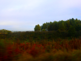 Ride to Falkirk -5- by IoannisCleary