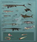Animals of the Western Interior Seaway by PaleoGuy